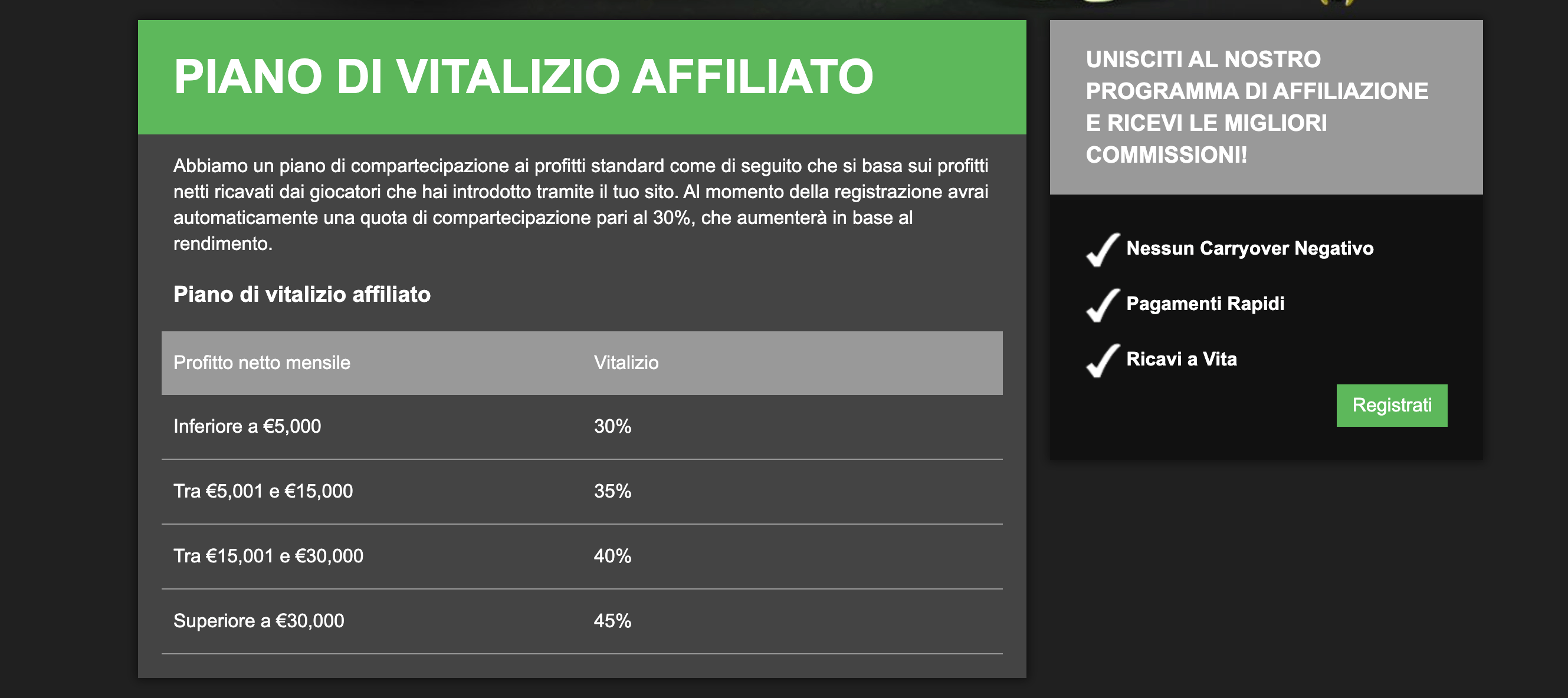 Commissioni di AffiliateRebels